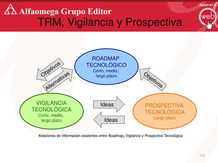 TRM, Vigilancia y Prospectiva