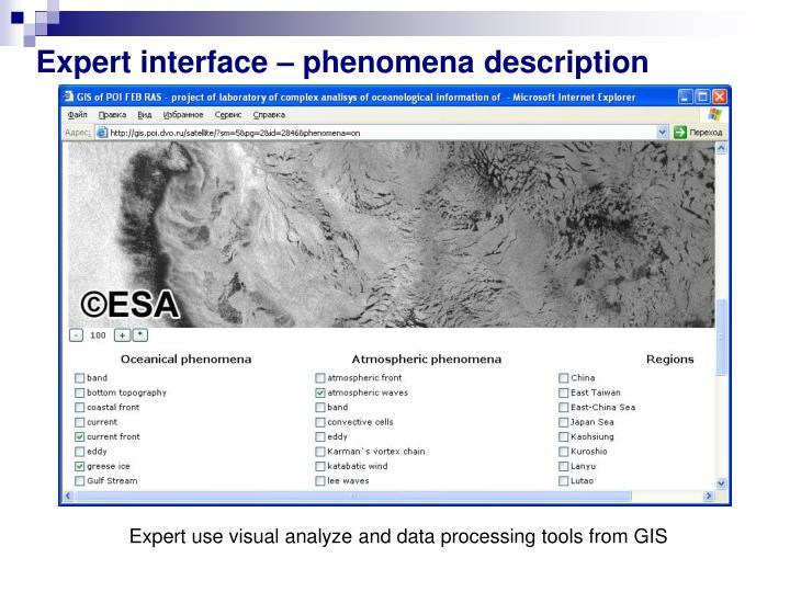 Expert interface –