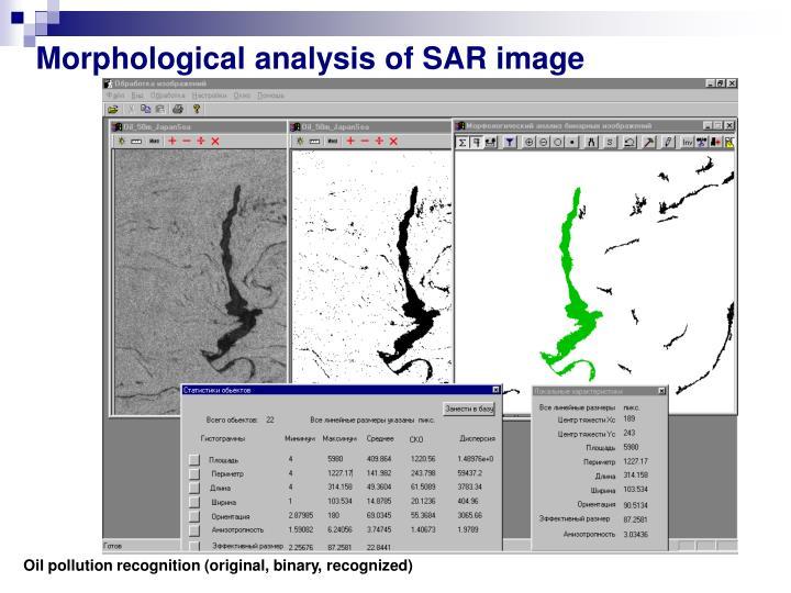 Morphological analysis of SAR image