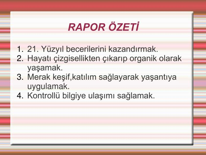 RAPOR ZET
