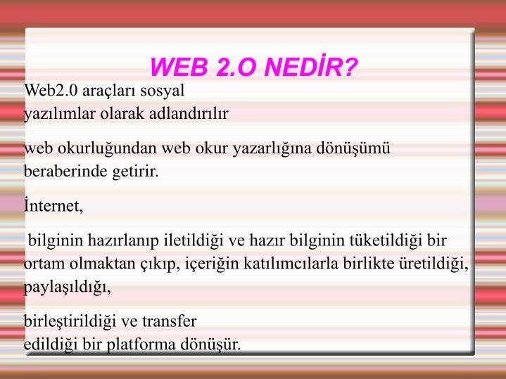 WEB 2.O NEDR?