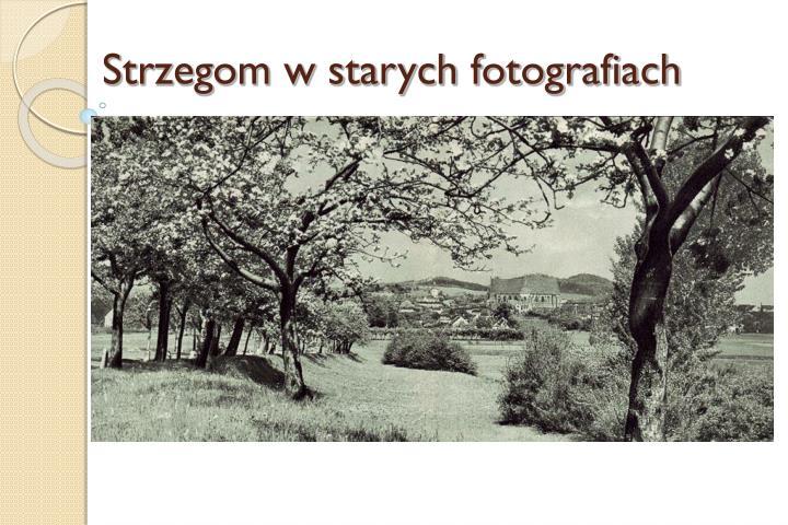 Strzegom w starych fotografiach