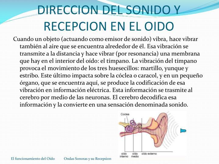 DIRECCION DEL SONIDO Y RECEPCION EN EL OIDO