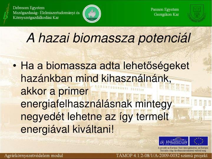 A hazai biomassza potenciál