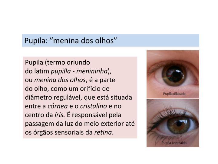 "Pupila: ""menina dos olhos"""