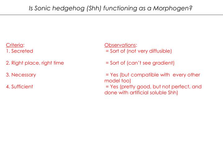 Is Sonic hedgehog (Shh) functioning as a Morphogen?