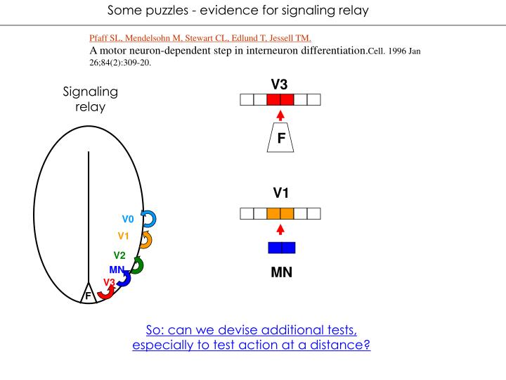 Some puzzles - evidence for signaling relay
