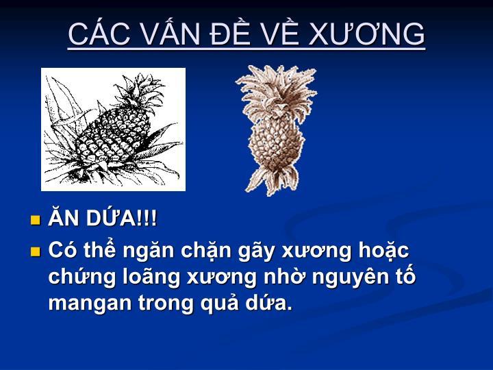 CC VN  V XNG