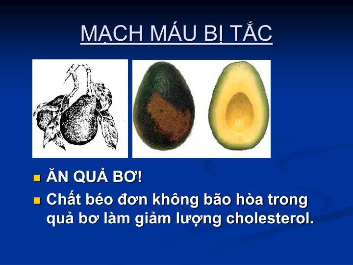 MCH MU B TC