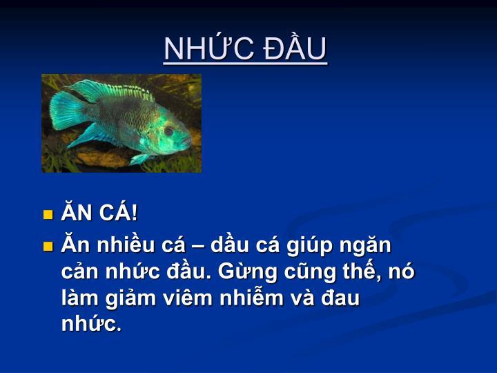 NHC U