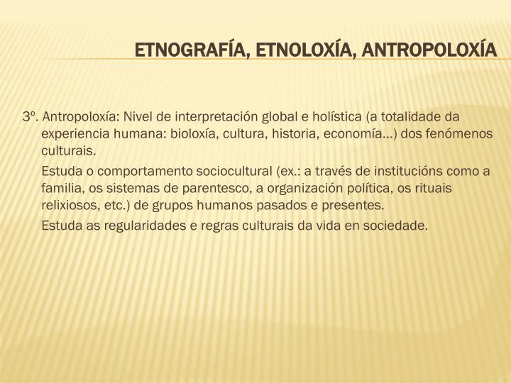 3º. Antropoloxía: Nivel de interpretación global e holística (a totalidade da experiencia humana: bioloxía, cultura, historia, economía...) dos fenómenos culturais.