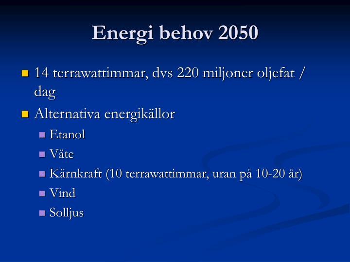 Energi behov 2050