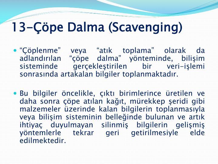 13-Çöpe Dalma (Scavenging)