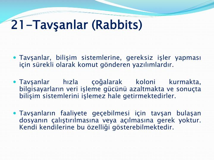 21-Tavşanlar (Rabbits)