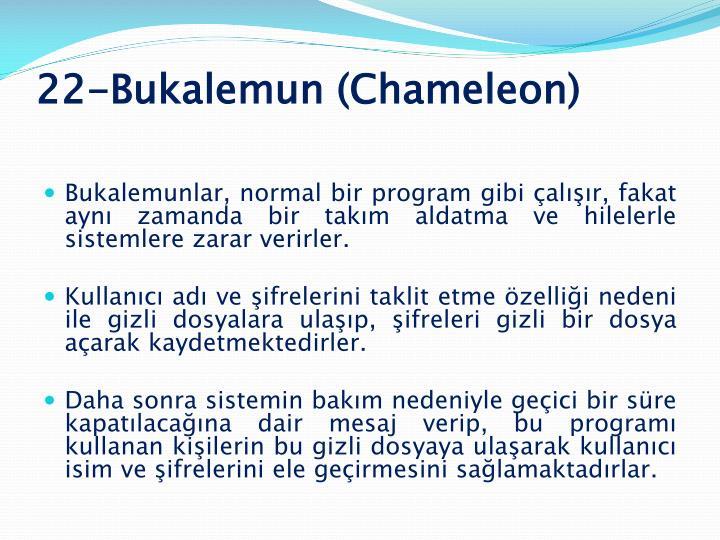 22-Bukalemun (Chameleon)