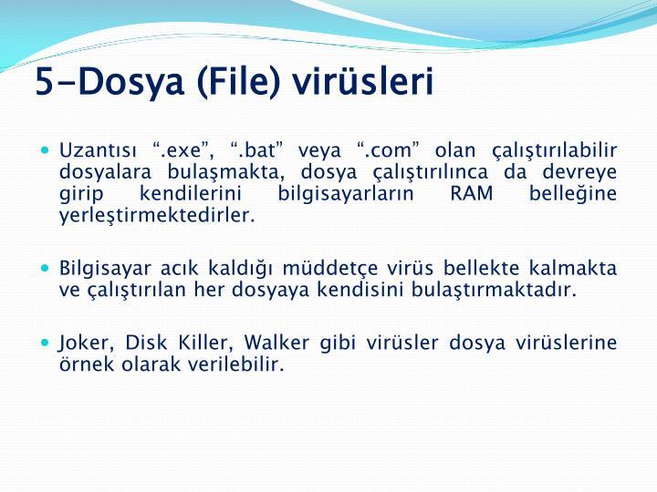 5-Dosya (File) virüsleri