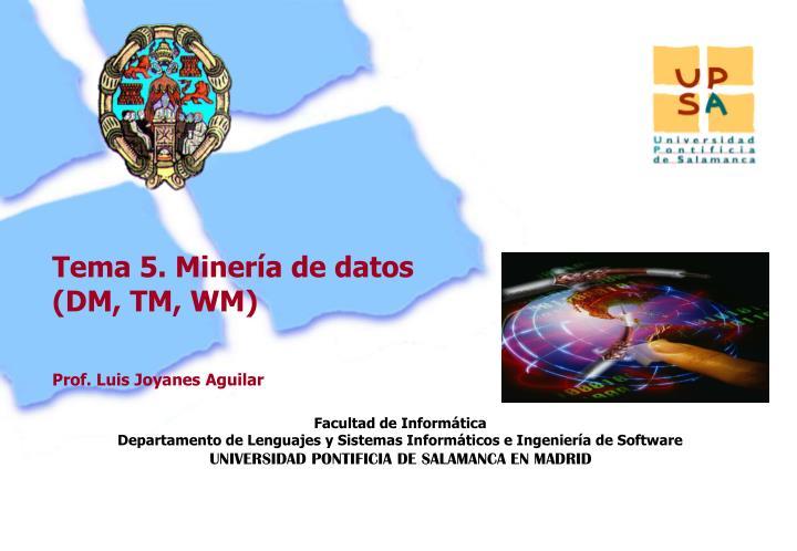 Tema 5. Minería de datos (DM, TM, WM)