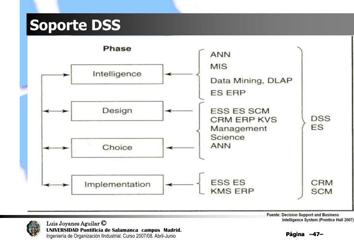Soporte DSS