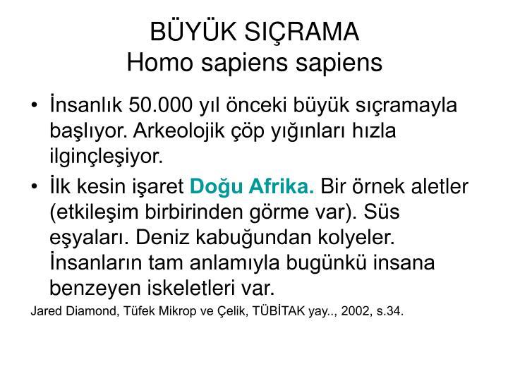 BYK SIRAMA