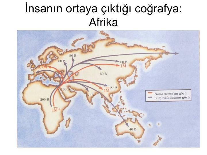 İnsanın ortaya çıktığı coğrafya: Afrika