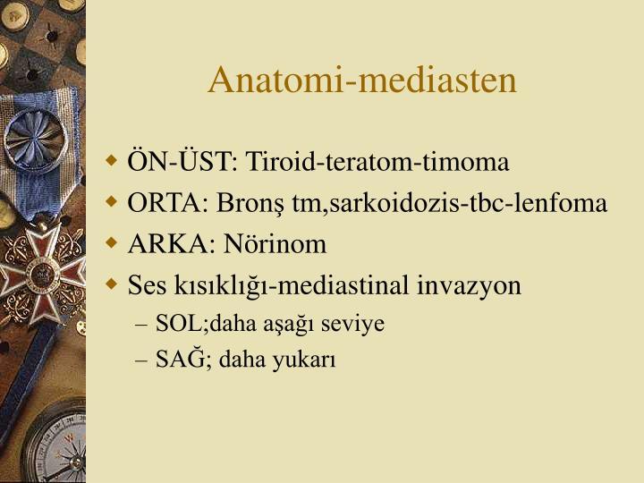 Anatomi-mediasten
