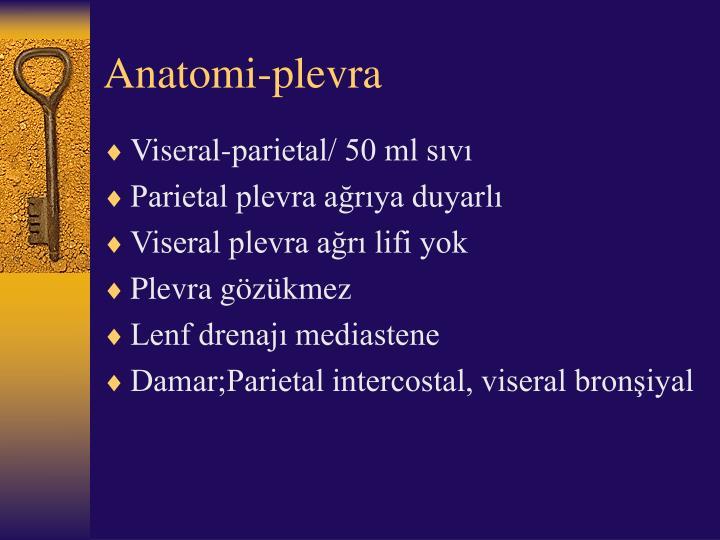 Anatomi-plevra