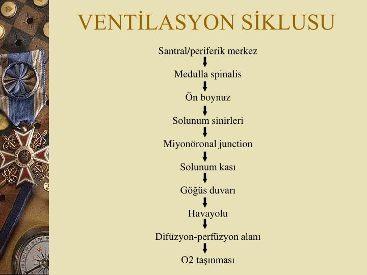 VENTİLASYON SİKLUSU