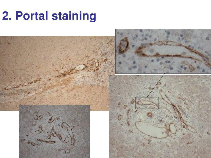 2. Portal staining