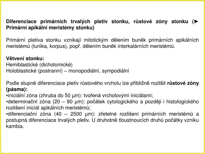 Diferenciace primrnch trvalch pletiv stonku, rstov zny stonku ( Primrn apikln meristmy stonku)