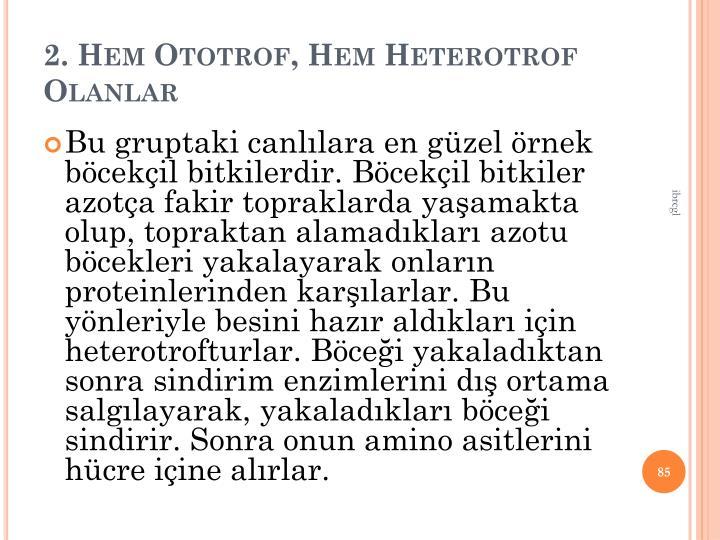 2. Hem Ototrof, Hem Heterotrof Olanlar
