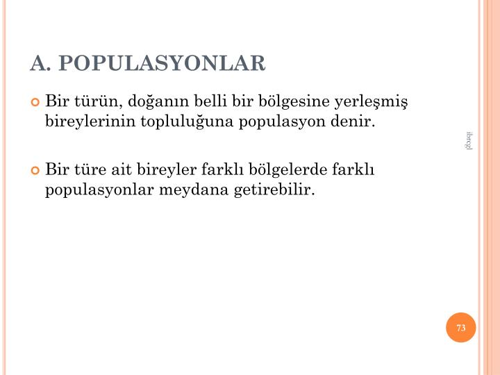 A. POPULASYONLAR