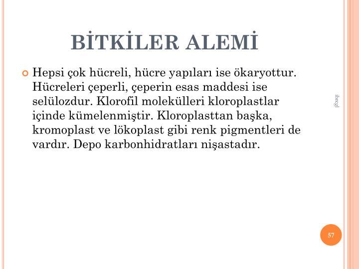 BTKLER