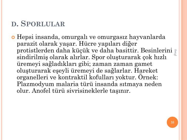 d. Sporlular