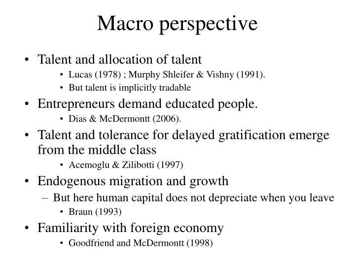 Macro perspective