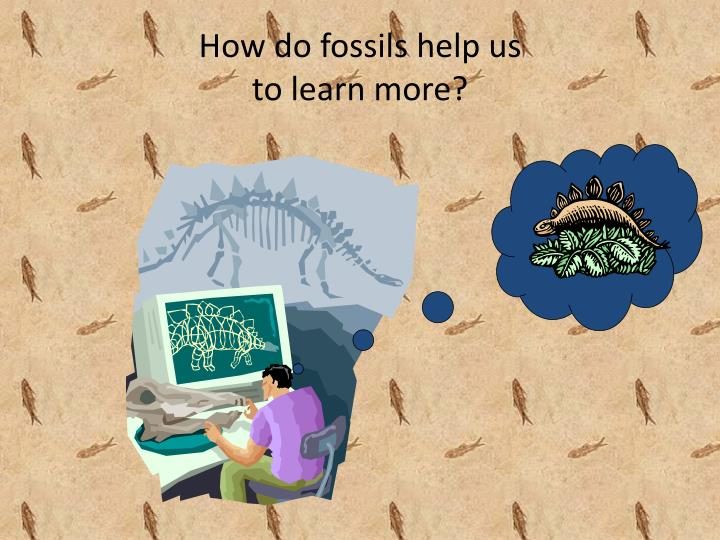 How do fossils help us