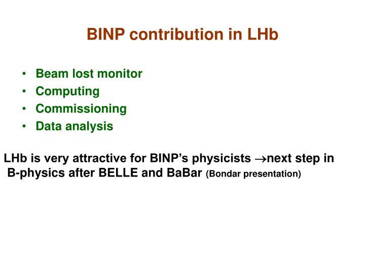 BINP contribution in LHb