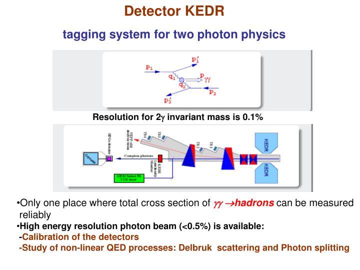 Detector KEDR