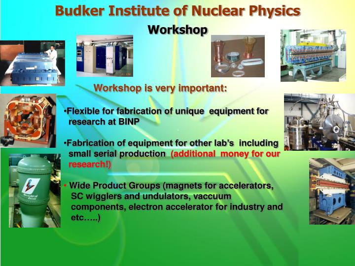 Budker Institute of Nuclear Physics
