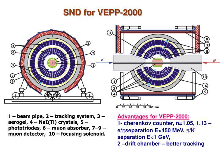 SND for VEPP-2000