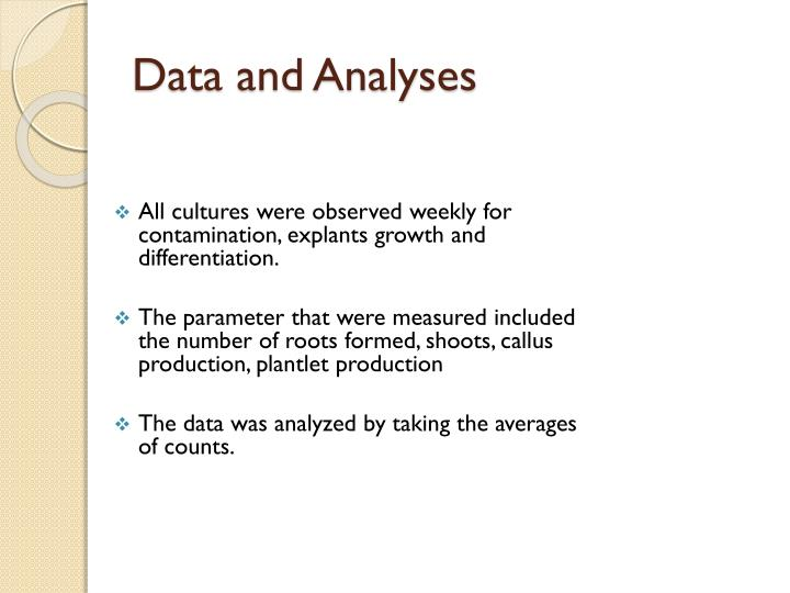 All cultures were observed weekly for contamination, explants growth and differentiation.