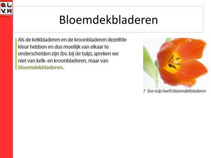 Bloemdekbladeren