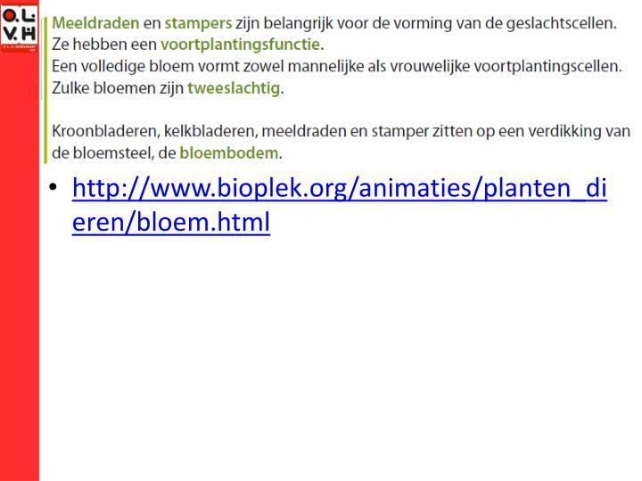http://www.bioplek.org/animaties/planten_dieren/bloem.html