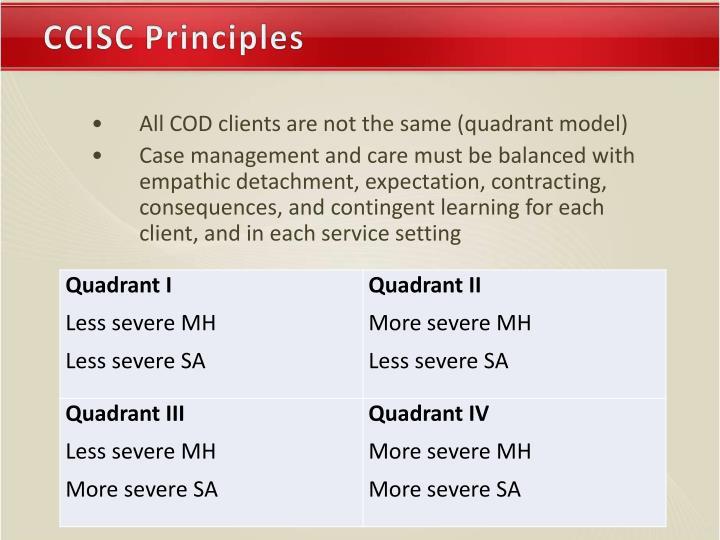 CCISC Principles