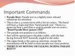 important commands1