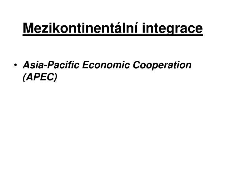 Mezikontinentální integrace