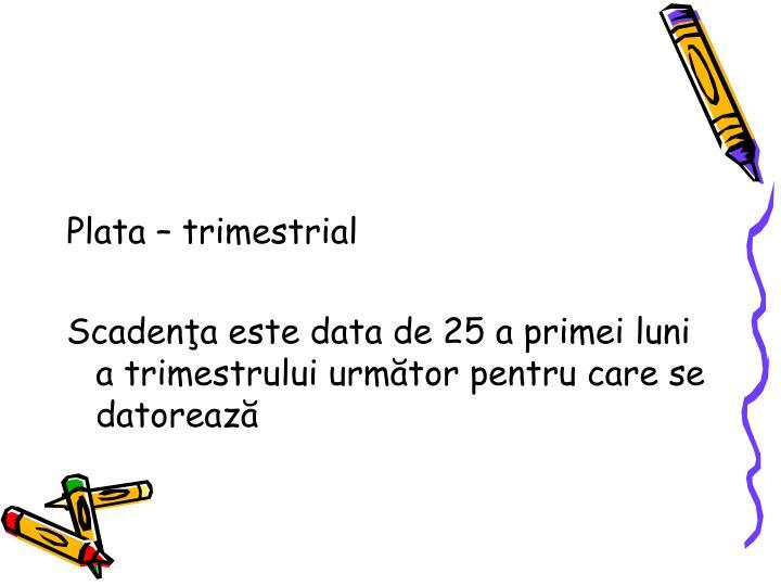 Plata  trimestrial