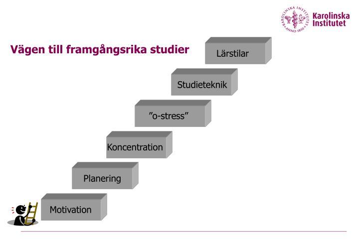 Vägen till framgångsrika studier