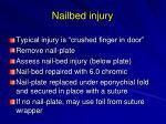 nailbed injury