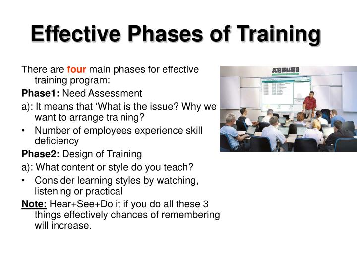Effective Phases of Training