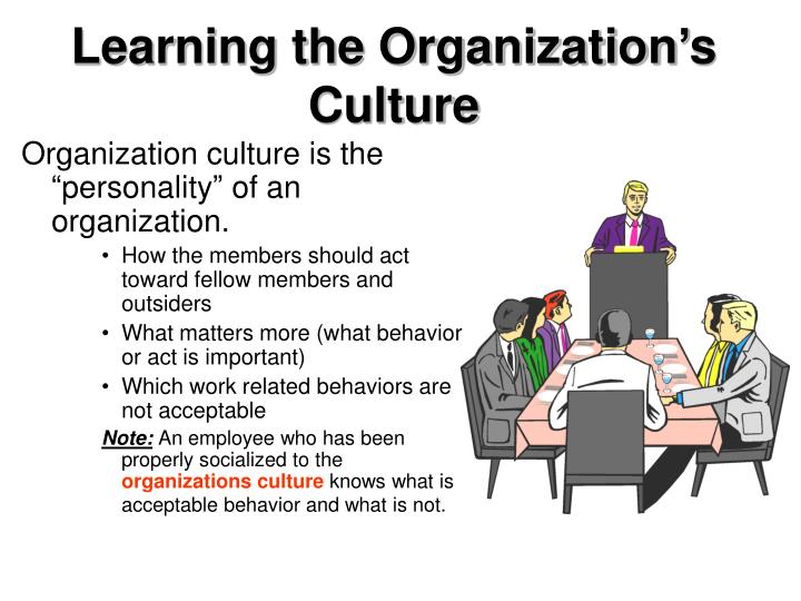 Learning the Organization's Culture